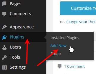 hover over plugins click on add new
